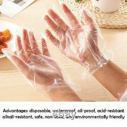 10000PCS Disposable Polythene Plastic Cleaning Catering Clear Gloves 100 Bags